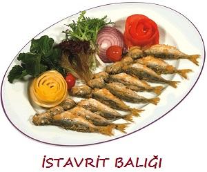İstavrit Balığı