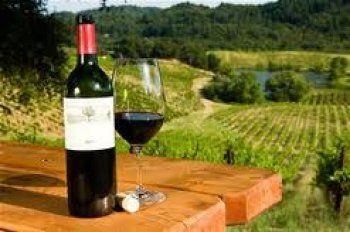 Tekirdağ Şarköy Şarabı